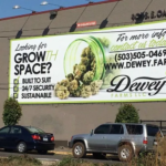 Legal Weed Ads Have Little Influence on Cannabis Consumption, Says Public Health Study