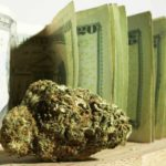 Legal Pot Sales Will Hit $10 Billion This Year