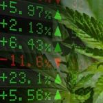 U.S. Medical Marijuana Market worth over USD 8 billion by 2024: Global Market Insights, Inc.
