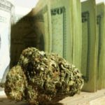 These Marijuana Stocks Are Attracting Investors From All Over